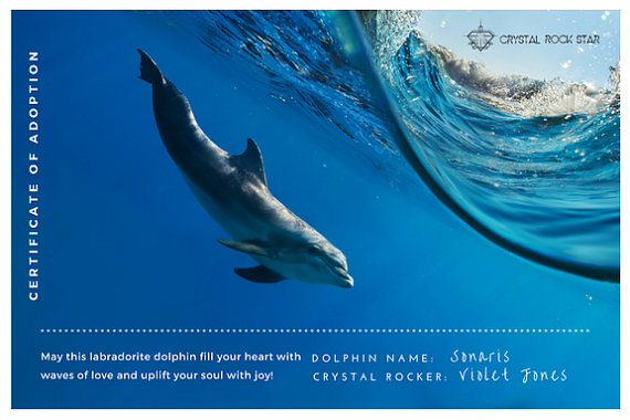 dolphin-adoption-certificate-crystal-rock-star